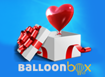 BALLOON BOX SOLO